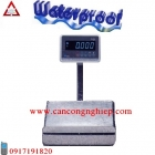 Cân điện tử thủy sản, Can dien tu thuy san - Can DS30P