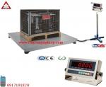 Cân công nghiệp điện tử, Can cong nghiep dien tu - Can sàn Inox Amcells
